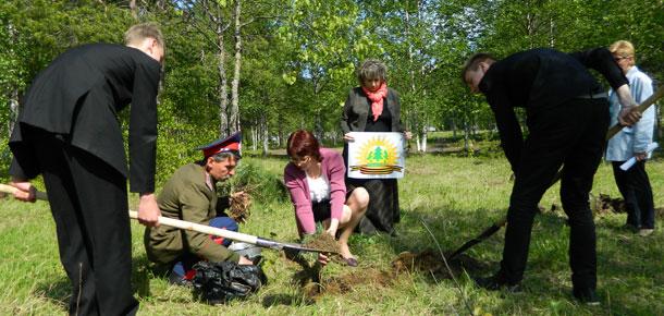 Печорские школьники и казачество посадили дальневосточные кедры