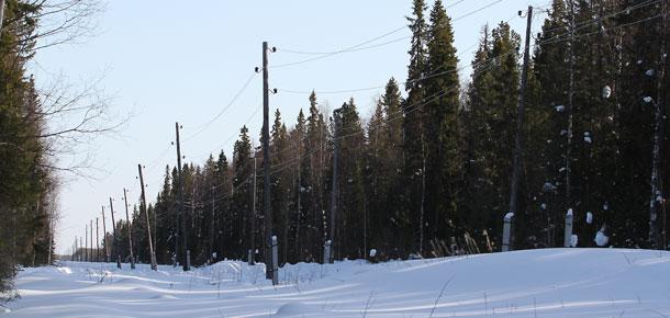 «Комиэнерго» устранило нарушение на линии электропередачи в Печорском районе