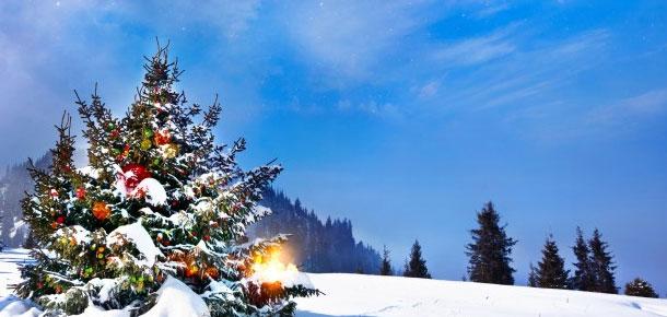 Печорский этнокультурный парк «Бызовая» приглашает вас на открытие зимнего сезона